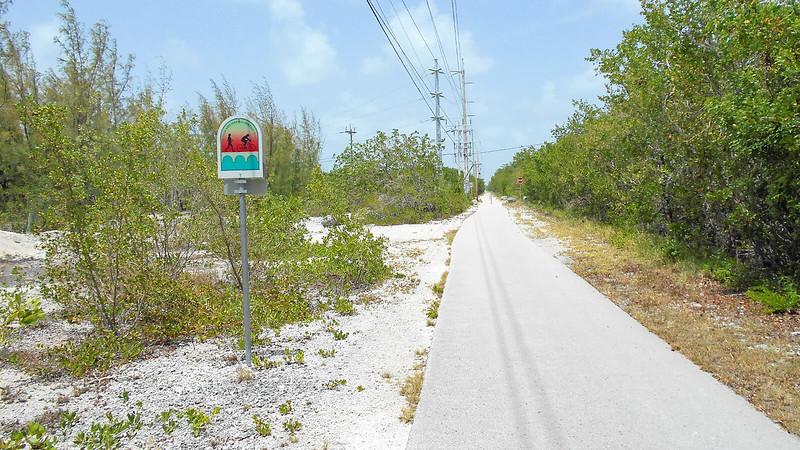 Bike path under powerline with bright white ground on left