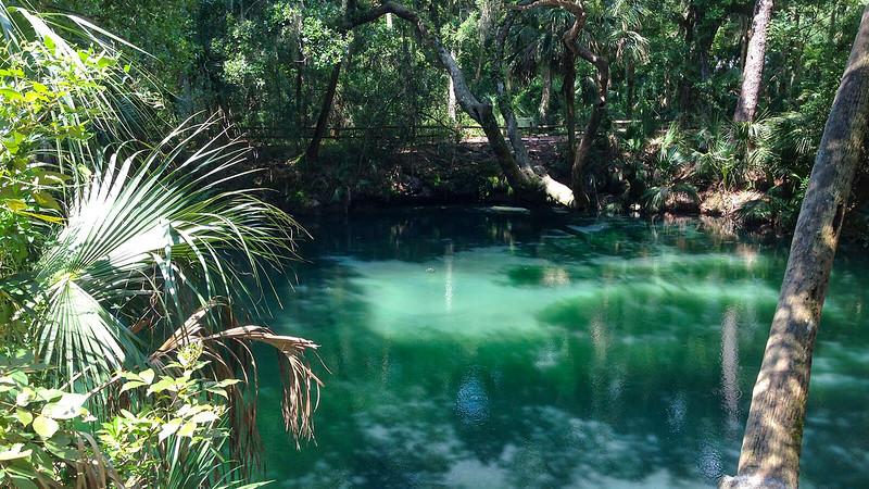 Green Spring basin