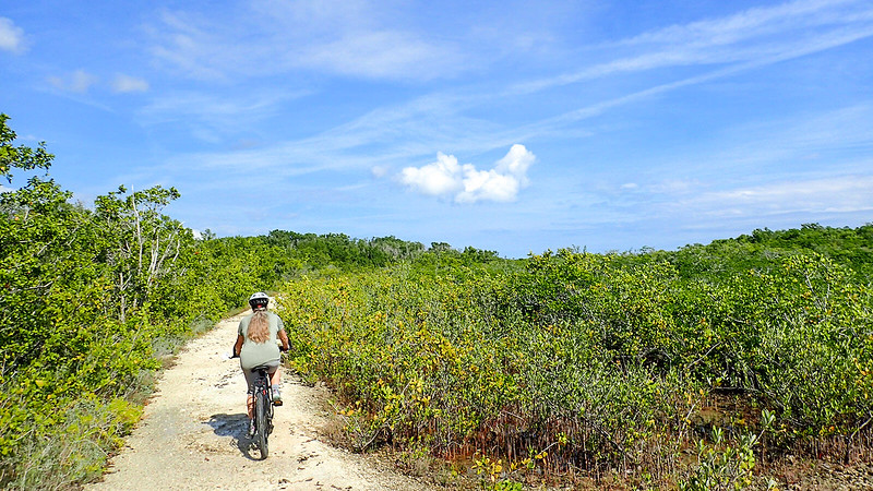 Sandra on bike in mangroves
