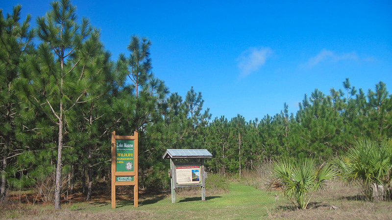 Trailhead with signage and kiosk next to pines
