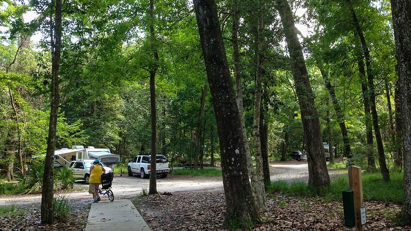 Pop up camper in campground