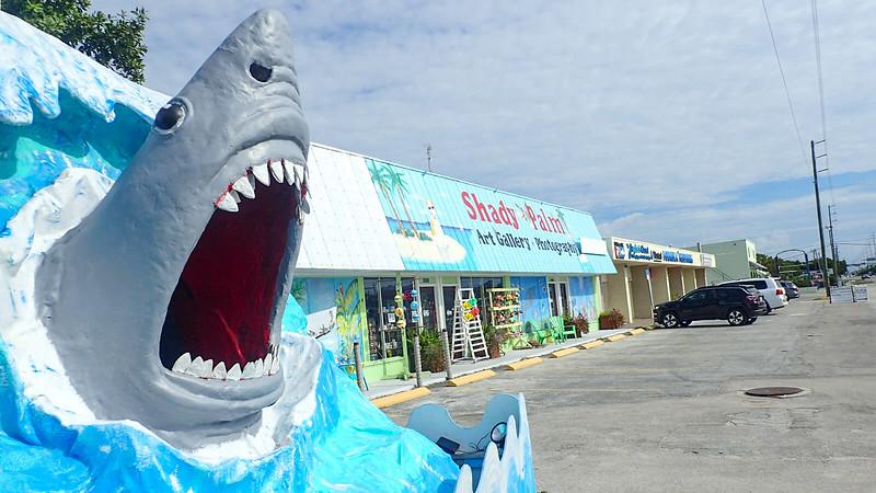Fiberglass shark to pose with