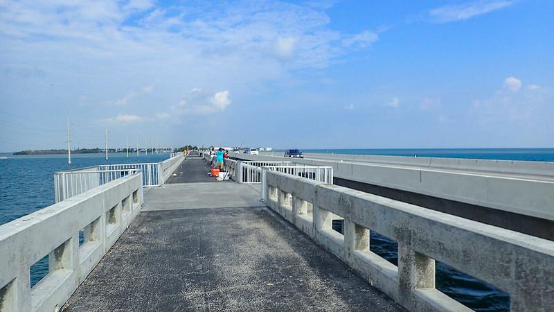 Bridge with platforms for fishing