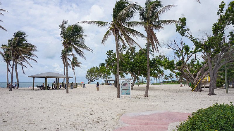 Beach with coconut palms and picnic pavilions