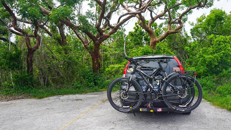 SUV with bikes on back under gumbo limbo tree