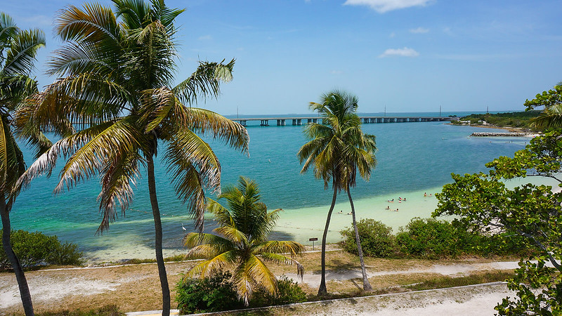 Coconut palms framing beach with bridge beyond