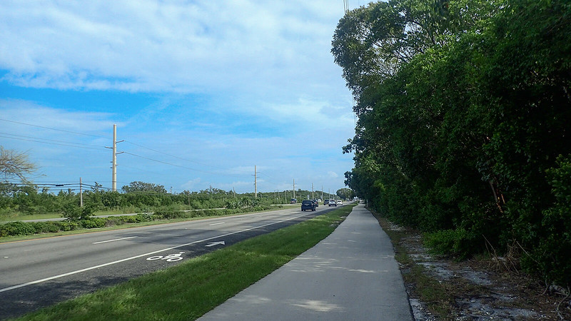 Bike path adjoined by tropical forest and a bike lane