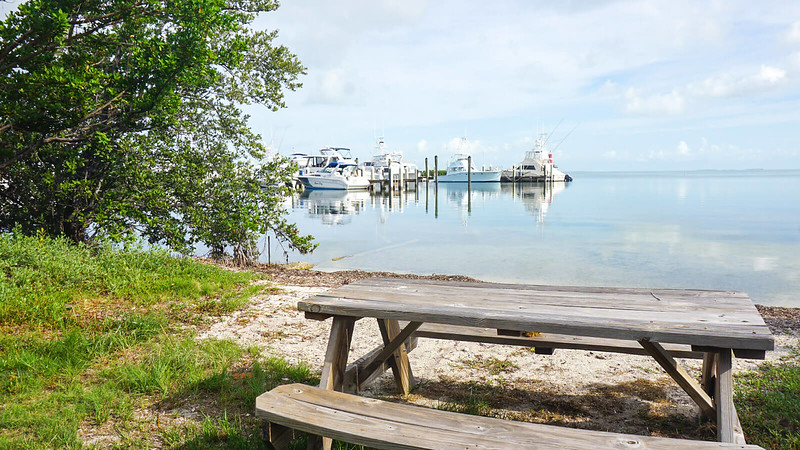 Picnic table on Florida Bay beach with docked boats in background