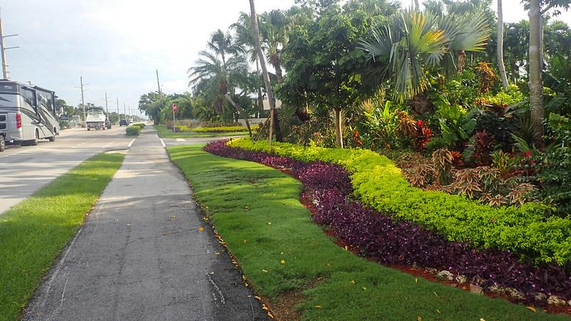 Asphalt bike path in front of landscaping