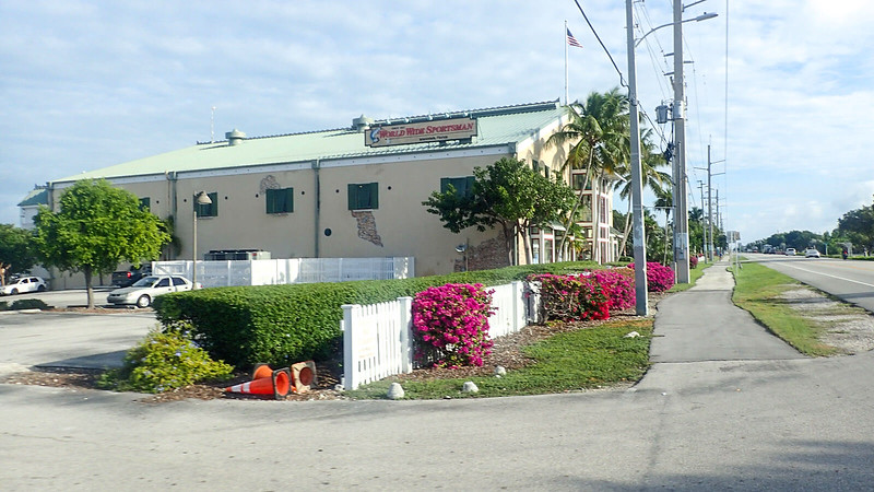 Azalea in bloom in front of two story store like warehouse