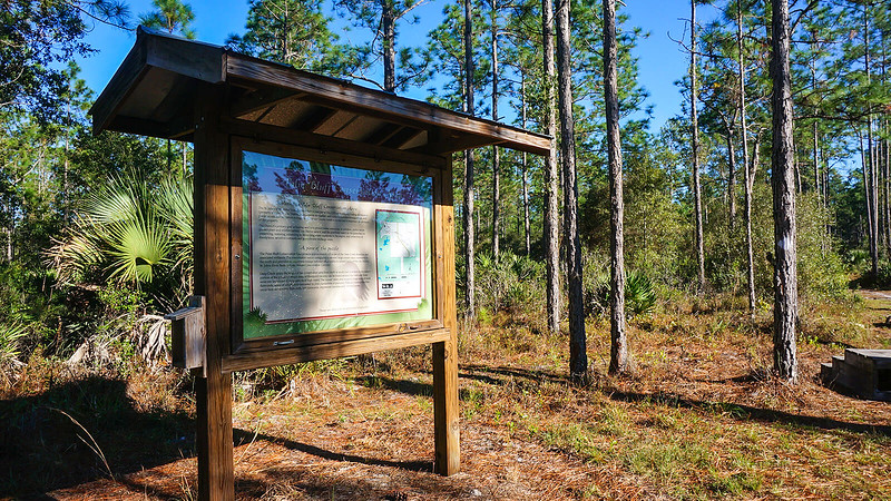 Kiosk with map adjoining trail into pines