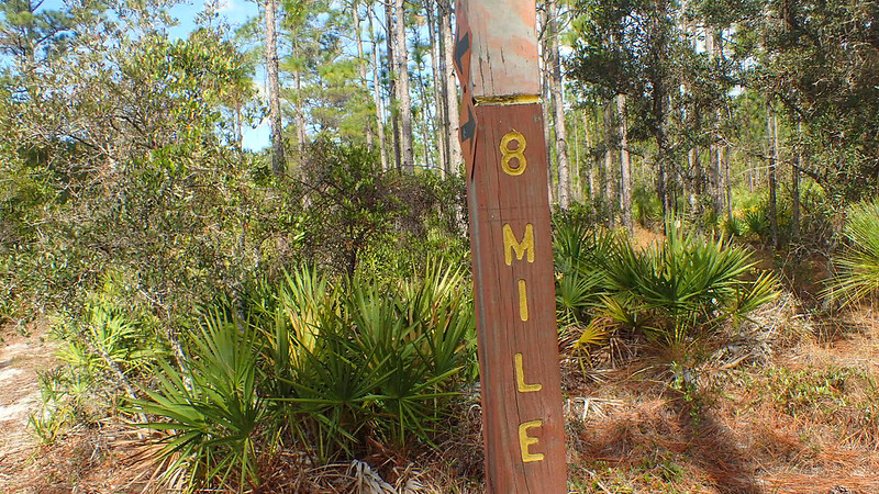 Wooden post with 8 Mile routed into it