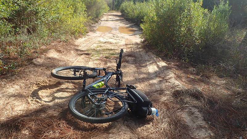 Bike on forest road after crash