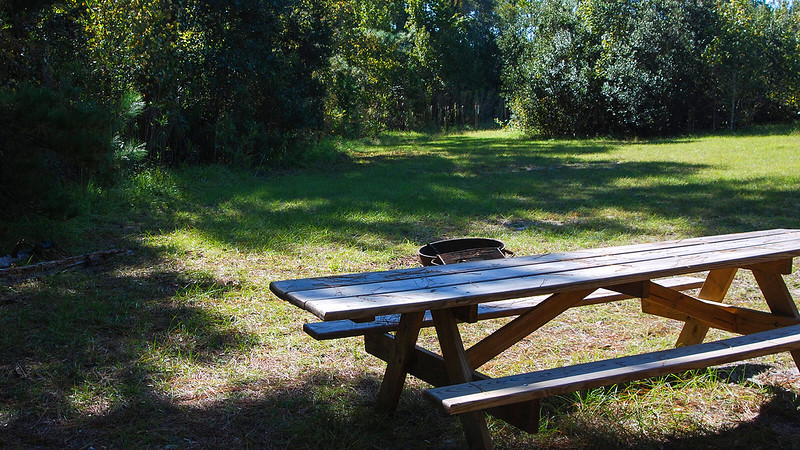 Picnic table and open area