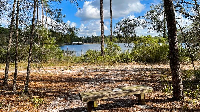 Overlook bench on lake