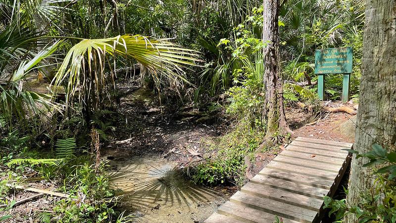 Spring fed waterway