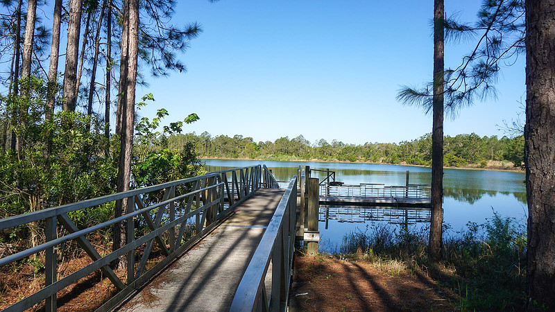 Long walkway to pier on pond