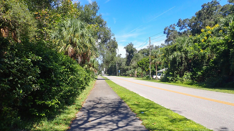 Asphalt path next to yards with tropical plants