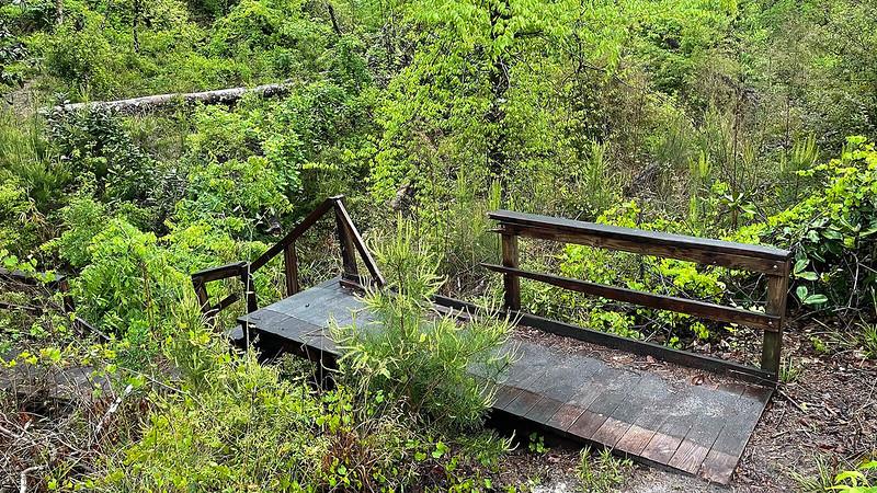 Bridge into ravine