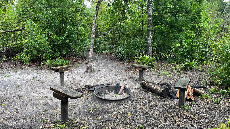 Small benches and fire ring