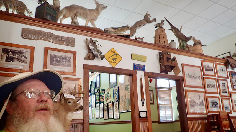 John looking at the massive amount of taxidermy on the restaurant walls
