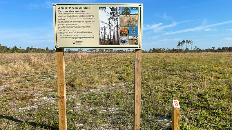Interpretive sign and post with number 13