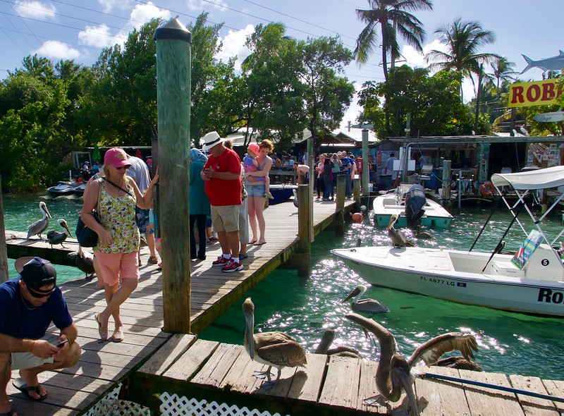 Robbie's Marina, Islamorada, FL
