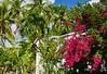 Islamorada, Beach Rd., FL