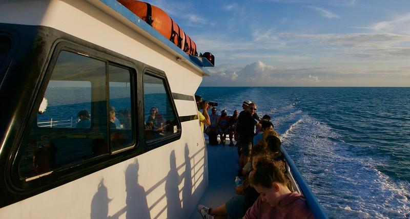 John Pennekamp Coral Reef State Park, Key Largo, FL