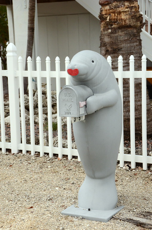 Only in the Keys will you find Manatee mailboxes