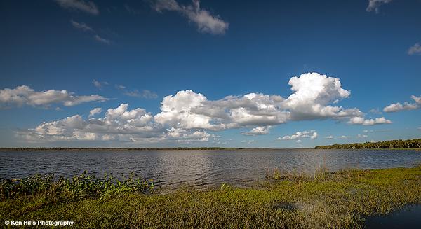 Upper Myakka Lake. Myakka River State Park.