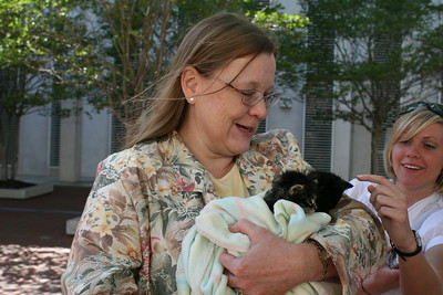 Melissa Abernathy, Leon County Humane Society (LCHS) Program Director with kittens from the LCHS Foster and Adoption program