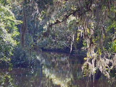 Hillsborough River State Park, FL