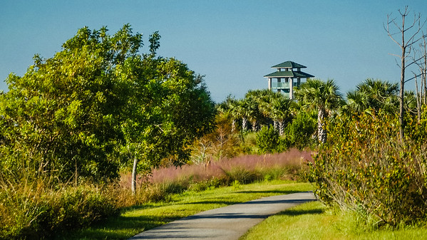 Wellington Environmental Preserve on Wednesday, November 1, 2017. The Wellington Environmental Preserve at the Marjory Stoneman Douglas Everglades Habitat is a 365-acre rainwater storage area with nature trails and learning centers. (Joseph Forzano / Deep Creek Films & Photography)
