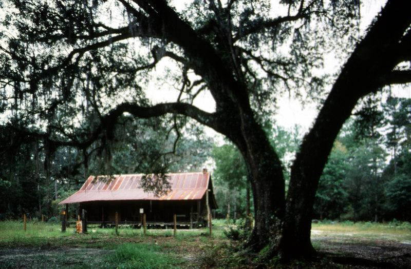 Old Langston homestead<br /> PHOTO CREDIT: Bart Smith / Florida Trail Association