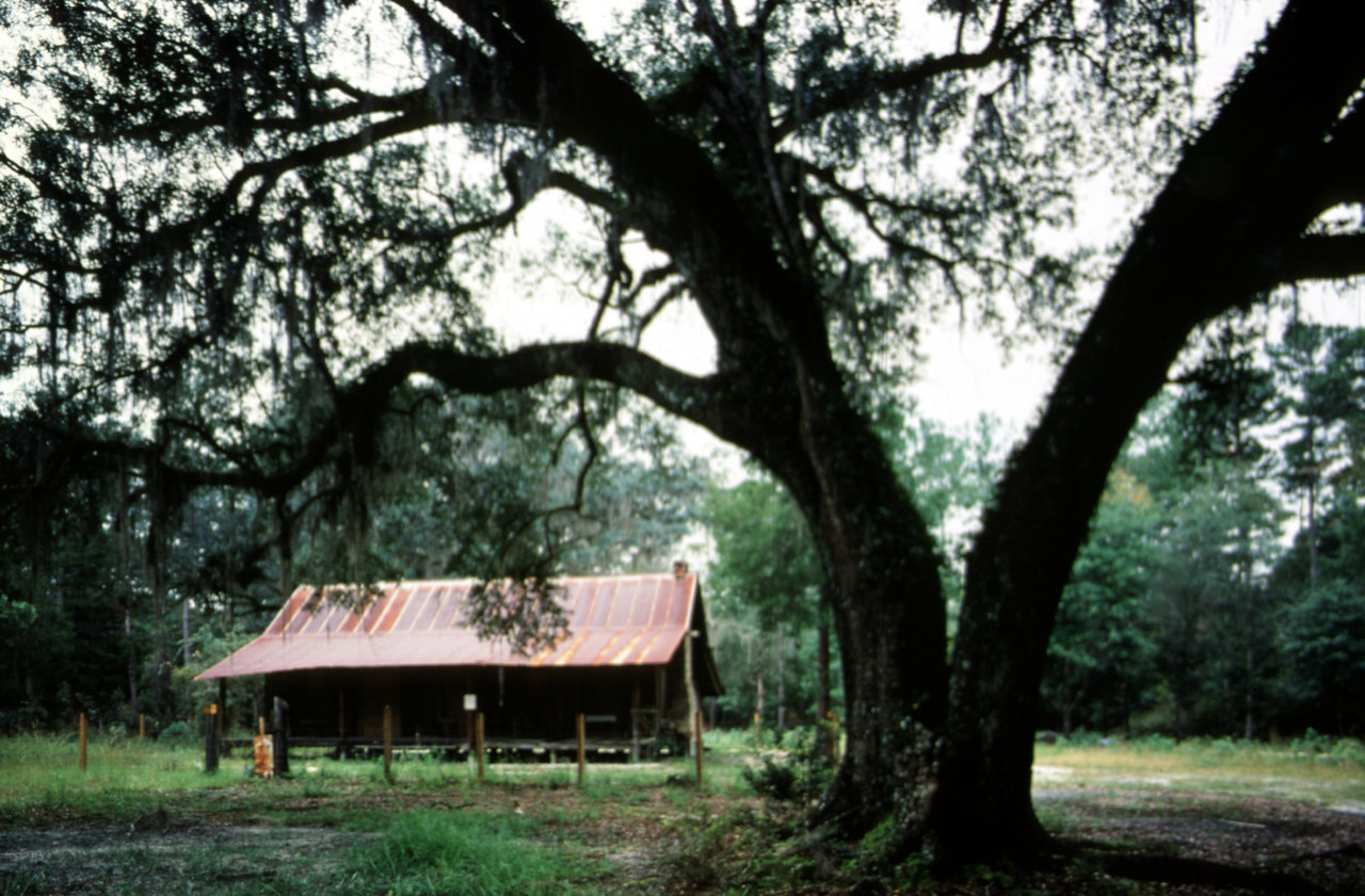 Old Langston homestead<br /> PHOTO CREDIT: Bart Smith / Florida Trail Association