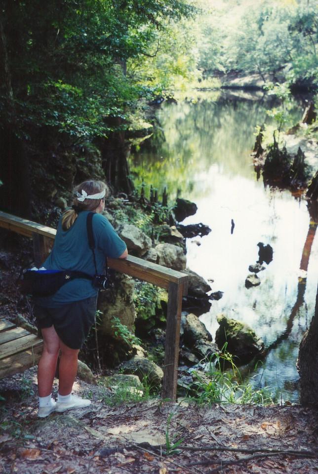 Aucilla River<br /> PHOTO CREDIT: Sandra Friend