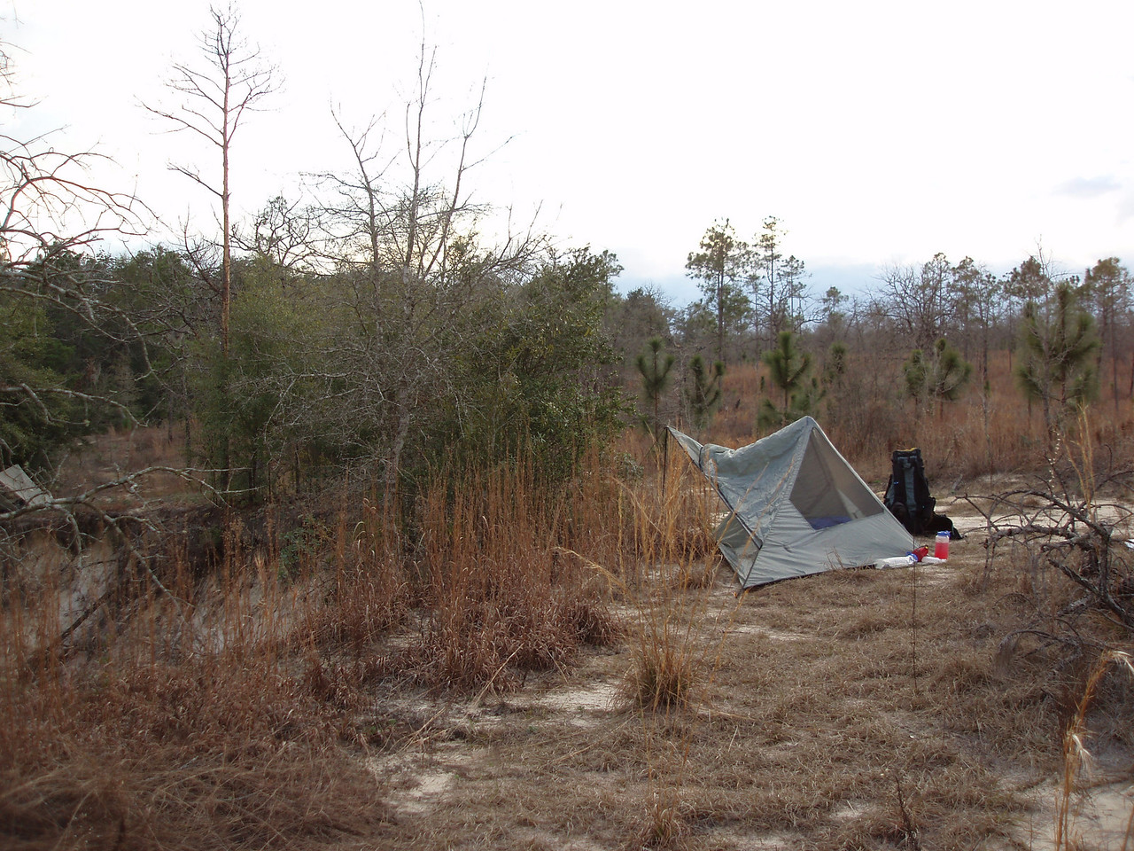 Camping in the Econfina Prairie<br /> PHOTO CREDIT: Robert Coveney / Florida Trail Association
