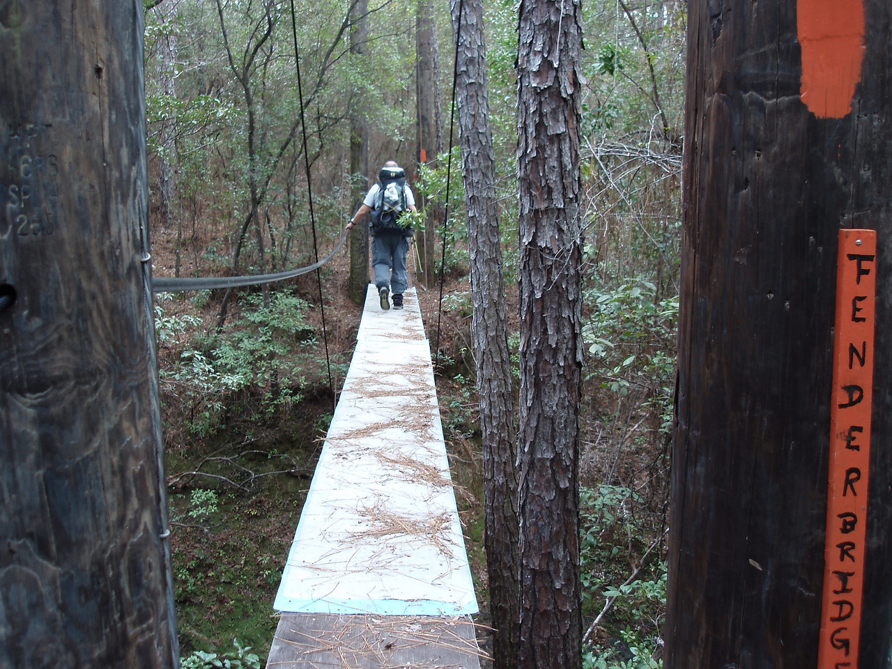 Fender Bridge over Econfina Creek<br /> PHOTO CREDIT: Robert Coveney / Florida Trail Association