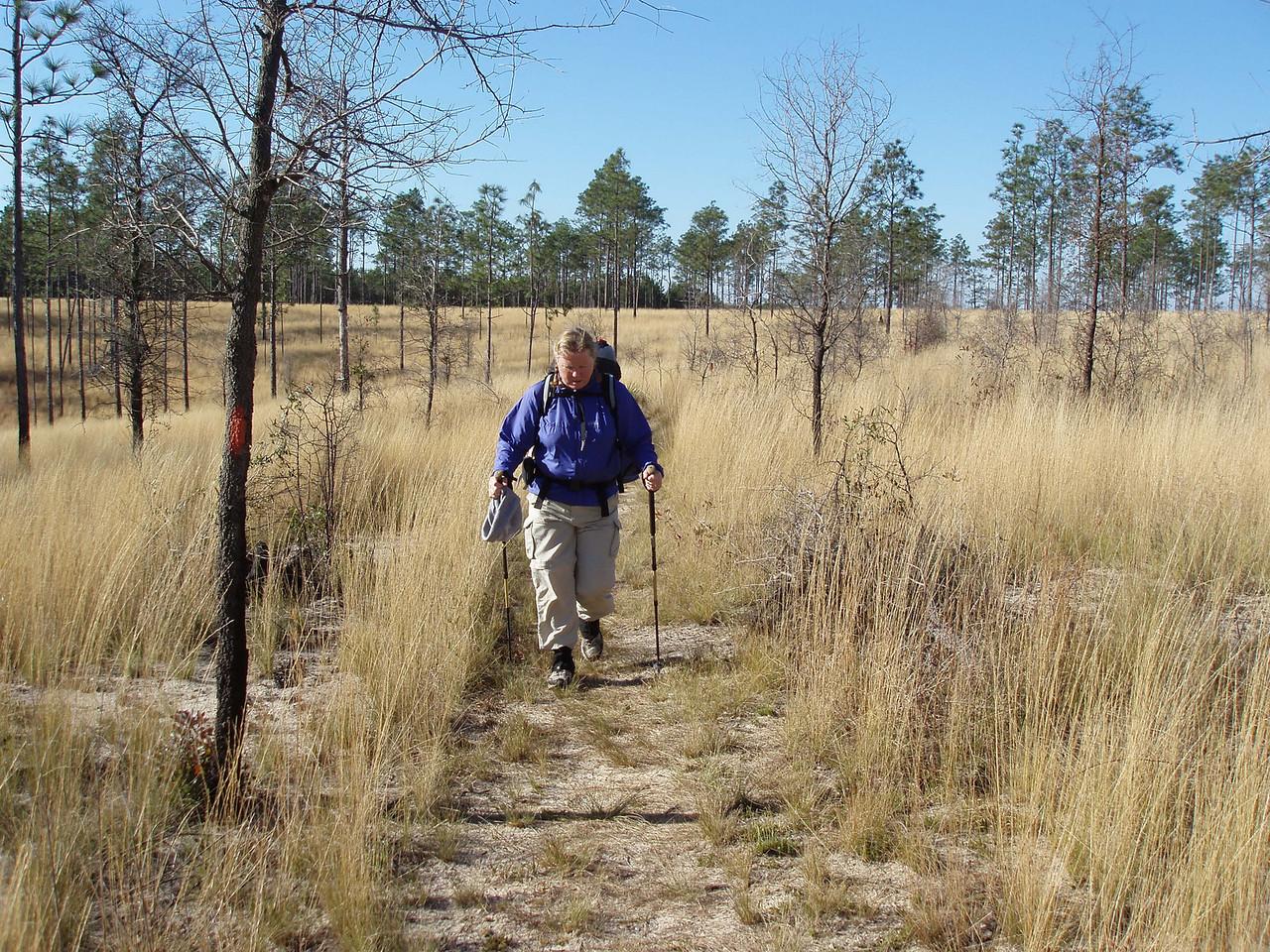 Econfina Prairie<br /> PHOTO CREDIT: Robert Coveney / Florida Trail Association
