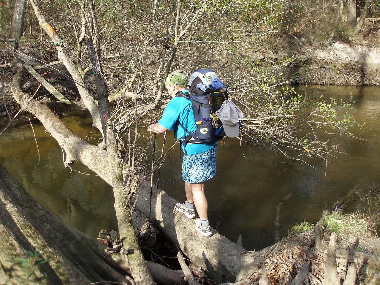 Difficult creek crossing<br /> PHOTO CREDIT: Robert Coveney / Florida Trail Association