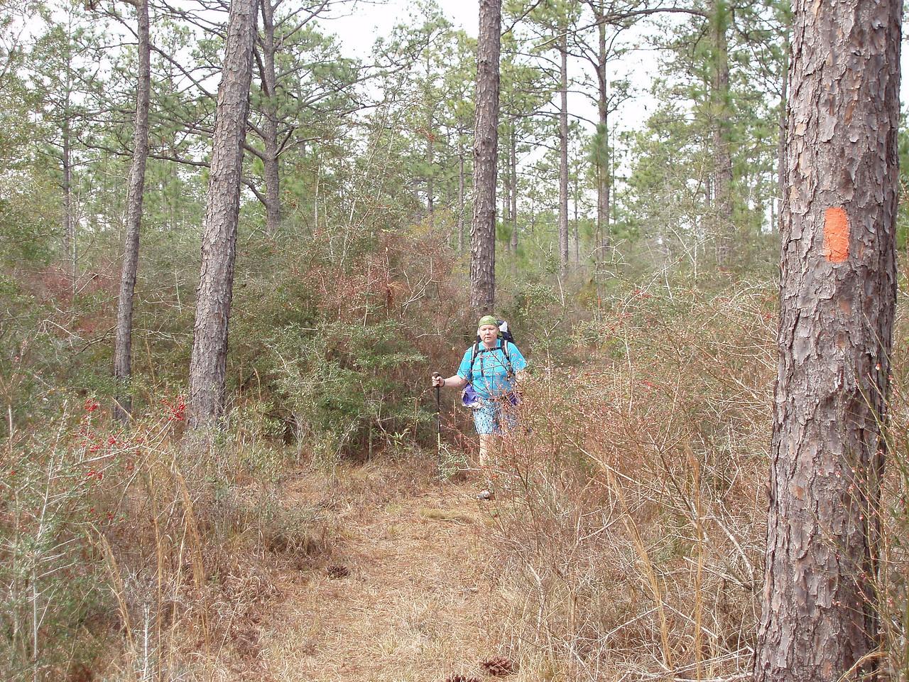 Sue Turner backpacking through Eglin<br /> PHOTO CREDIT: Robert Coveney / Florida Trail Association