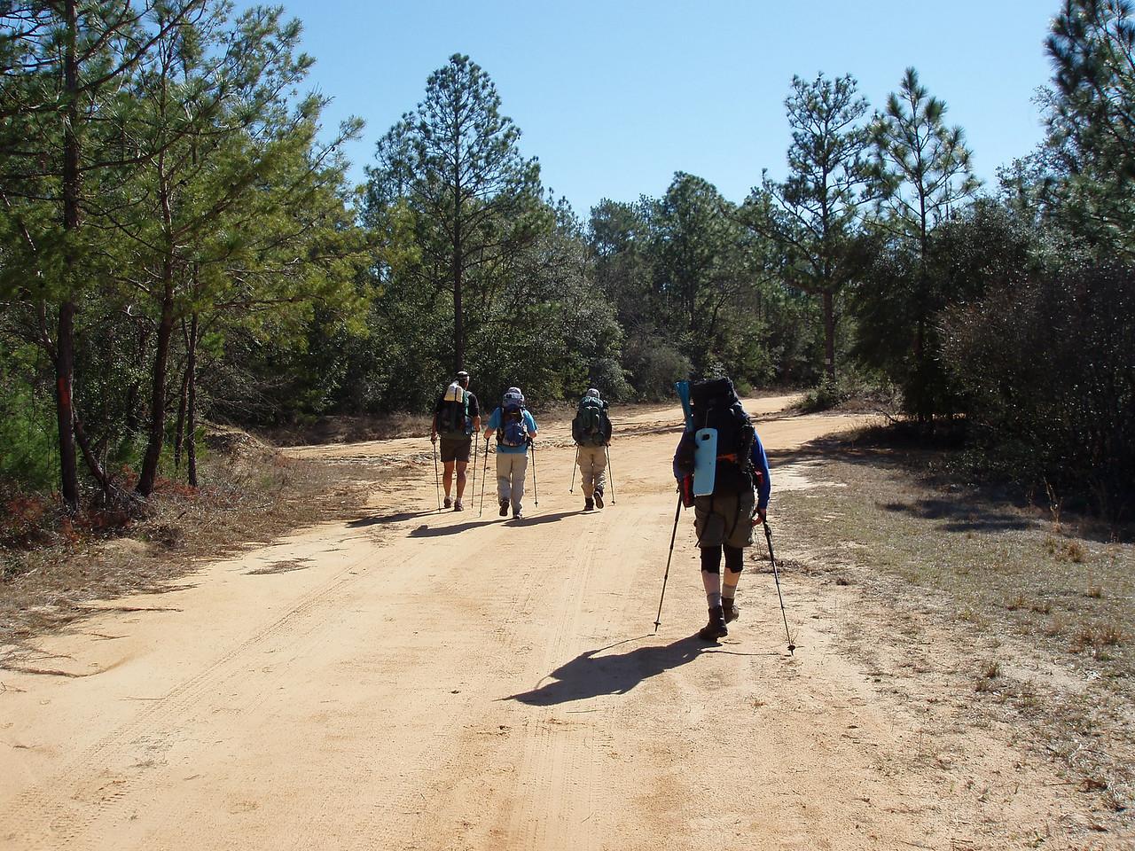 Backroads hiking in Eglin AFB<br /> PHOTO CREDIT: Robert Coveney / Florida Trail Association
