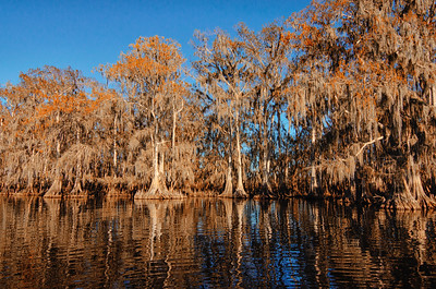 Winter on the St Johns River