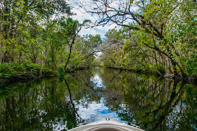 Old logging canal between St Johns River and Hontoon Dead River