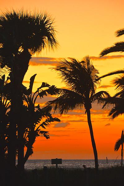 Florida Nature & Places