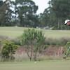 Golf-6