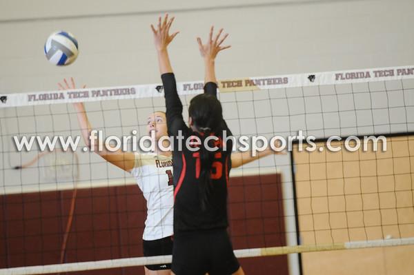 Volleyball-6