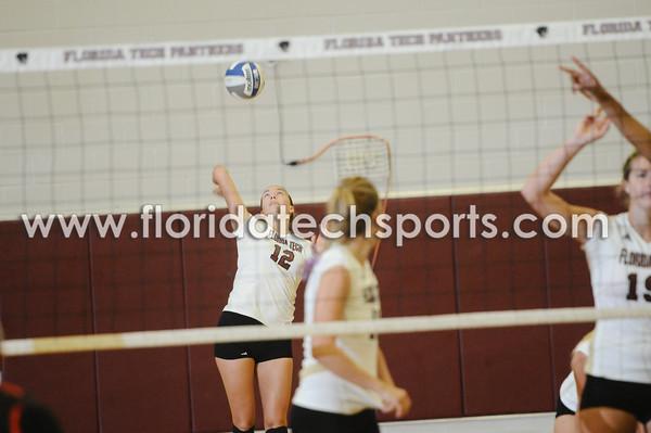 Volleyball-9