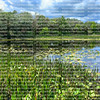 Beautiful Green Cay Nature Center and Wetlands located in Boynton Beach, Florida, USA. Green Cay is a nature center that overlooks 100 acres of constructed wetland.